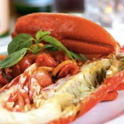 anticavenezia_lobster